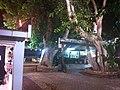 PikiWiki Israel 30286 Promenade in Tiberias.jpg