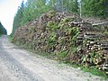 Piled wood for woodchips.JPG