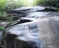 Pisgah National Forest (waterfall).jpg