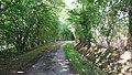 Planches Orne Normandie Le Bois Brunel La Motte 61 2017 02.jpg