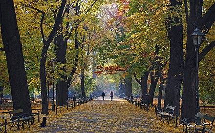 Planty Park, which surrounds Krakow's Old Town Planty Park, autumn, Old Town, Krakow, Poland.jpg