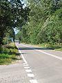 Podlaskie - Narew - Chrabostówka DW685 20110910 02.JPG