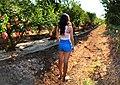 Pomegranate bokehrama portrait.jpg