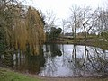 Pond - geograph.org.uk - 128540.jpg