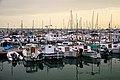 Port de Blanes - panoramio (2).jpg