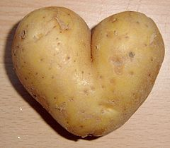 Potato heart mutation.jpg
