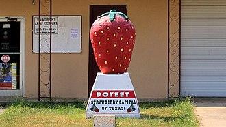 Poteet, Texas - Poteet landmark