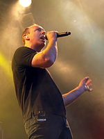 Provinssirock 20130614 - Bad Religion - 29.jpg