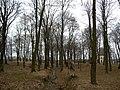Pruszkow Park Dworski-004.JPG