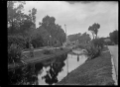 Public gardens in Invercargill, 1926 ATLIB 313324.png