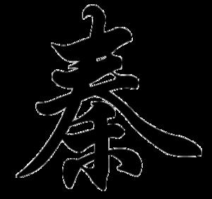 Qin (surname) - Image: Qin name