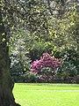 Queen St. Gardens West, Edinburgh 014.jpg