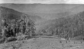 Queensland State Archives 349 Obi Obi Maroochy Shire c 1931.png
