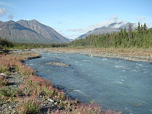 Kluane National Park and Reserve - Quill Creek