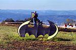 Révolution Batman - Cervolix - dsdm05289.jpg