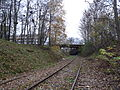 Rail tracks under Kopli bridge.JPG