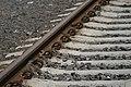 Rails (3054921768).jpg