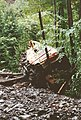 Railway accident Braz 1995 05.jpg
