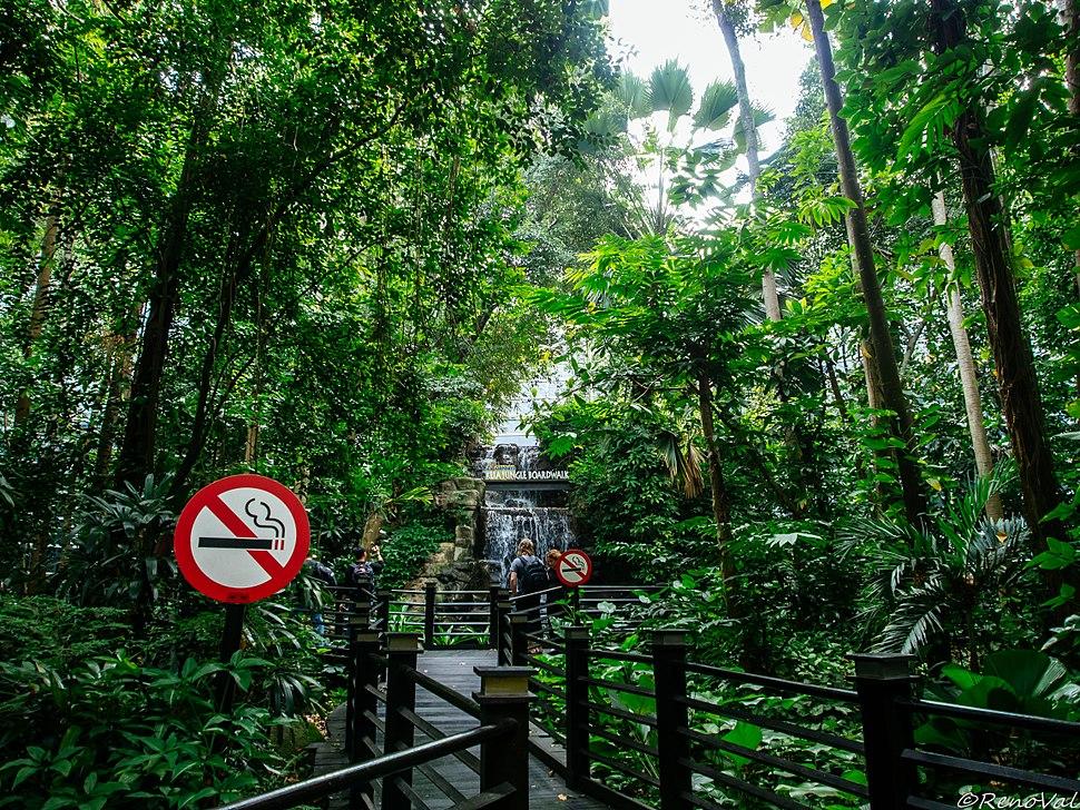 Rain Forest in KLIA