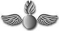 Rating Badge AO.jpg