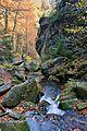 Rešovské vodopády na podzim 14.jpg