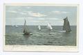 Regatta, Gulfport, Miss (NYPL b12647398-68074).tiff