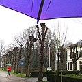 Regen - panoramio (1).jpg