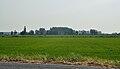 Reisfeld in der Po Ebene.jpg