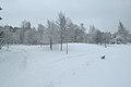 Rekipellonpuisto talvella.jpg