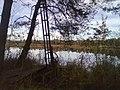 Riedsee - im Vordergrund Torfabbaumaschine - geo.hlipp.de - 22408.jpg