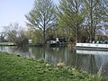 River Thames at Lechlade - geograph.org.uk - 1262681.jpg