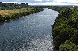 Bueno River river in Chile
