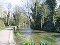 Riverside walk by the River Frome - geograph.org.uk - 390491.jpg