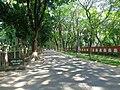 Road to kamlapur.jpg