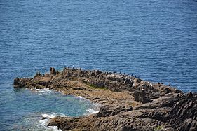 Roche aux cormorans.jpg