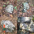 Rock Carvings from Bear Spirit Mountain West Virginia Dating Pleistocene epoch.jpg