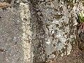 Rock with white line (827ef92796974635831341bb541e395b).JPG