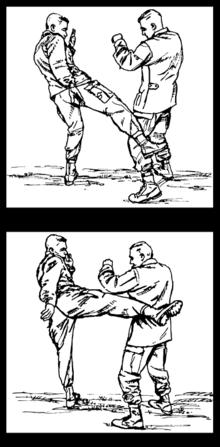 Muay Thai Angle Kick 87