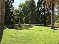 Royal Botanical Garden in Madrid 19.jpg
