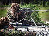Royal Marines snipers displaying their L115A1 rifles.jpg