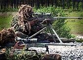 Royal Marines snipers displaying their L115A1 rifles.jpg