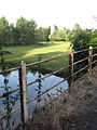 Rusty railings - geograph.org.uk - 900033.jpg