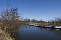Rzeka Wieprz w okolicach Milejowa, Polska, 2.jpg