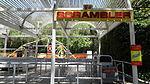 SFMM- Scrambler.JPG
