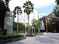 SZ 深圳 Shenzhen 羅湖 Luohu 深南東路 Shennan East Road August 2018 SSG MixC mall tree China Resources 老人葵 Washingtonia filifera 03.jpg