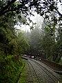 Sacred Tree Station02.jpg