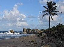 Saint Joseph, Barbados 005.jpg