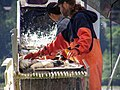 Salmon Sorting Taku Smokeries wc11.jpg