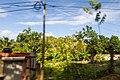 Samaná Province, Dominican Republic - panoramio (25).jpg