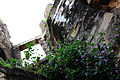 Sangni Fort-Above the Entrance.JPG